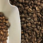 コーヒーの表記